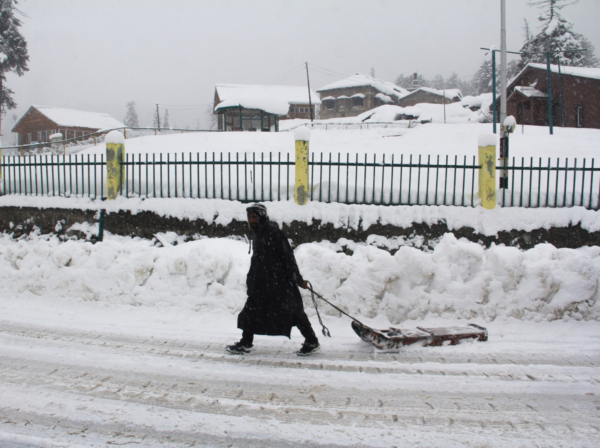 In Pictures: Fresh snowfall in Kashmir brings back cold wave-like conditions