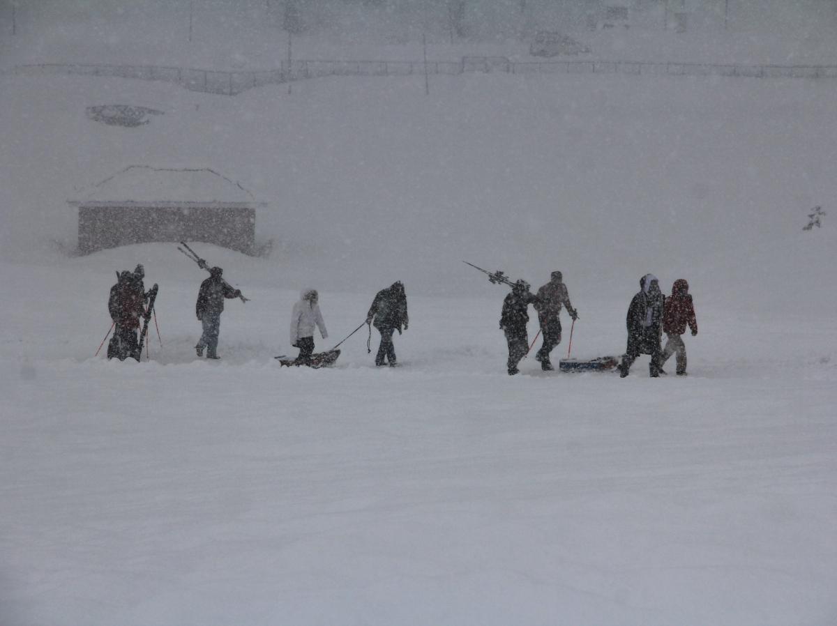 Tourists take sledge ride during fresh snowfall in Ski Resort Gulmarg, Kashmir.