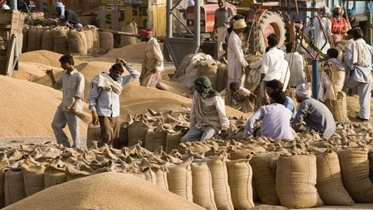 Grain Mandi/ Representative pic