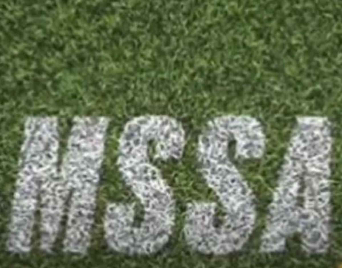 Elite panelists for MSSA handball workshop