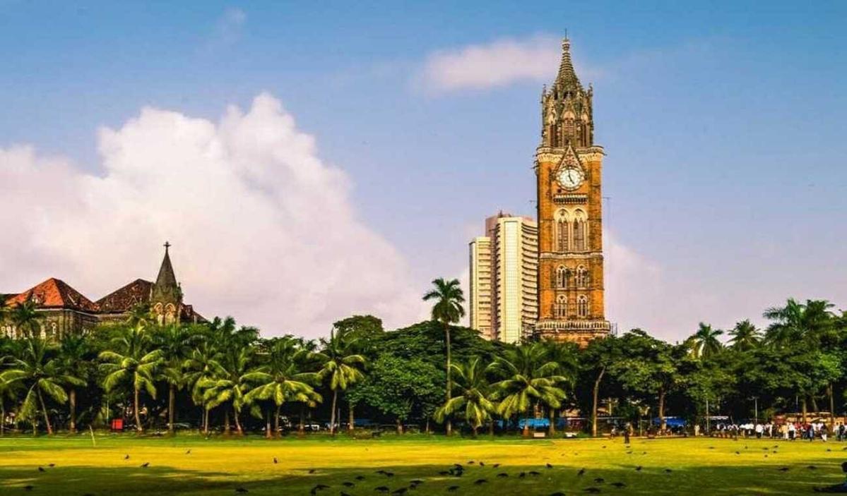 Number of PhD & MPhil scholars at Mumbai University dip