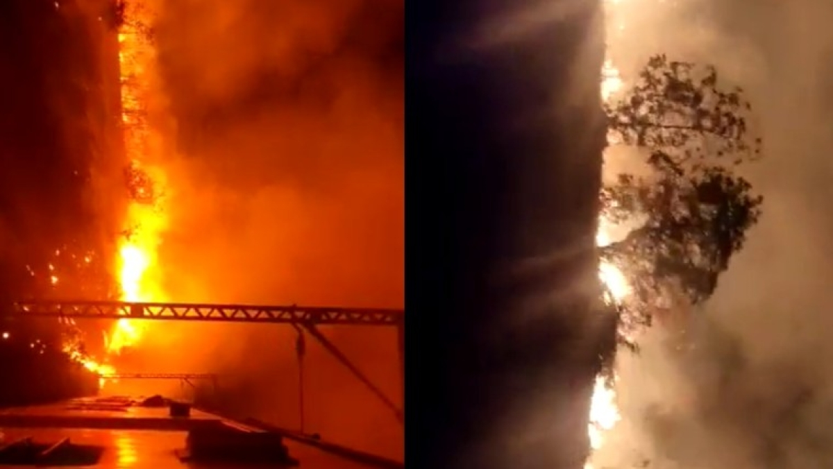 Thane: Massive fire in dry grass affect train services between Khardi and Ombarmali; watch video