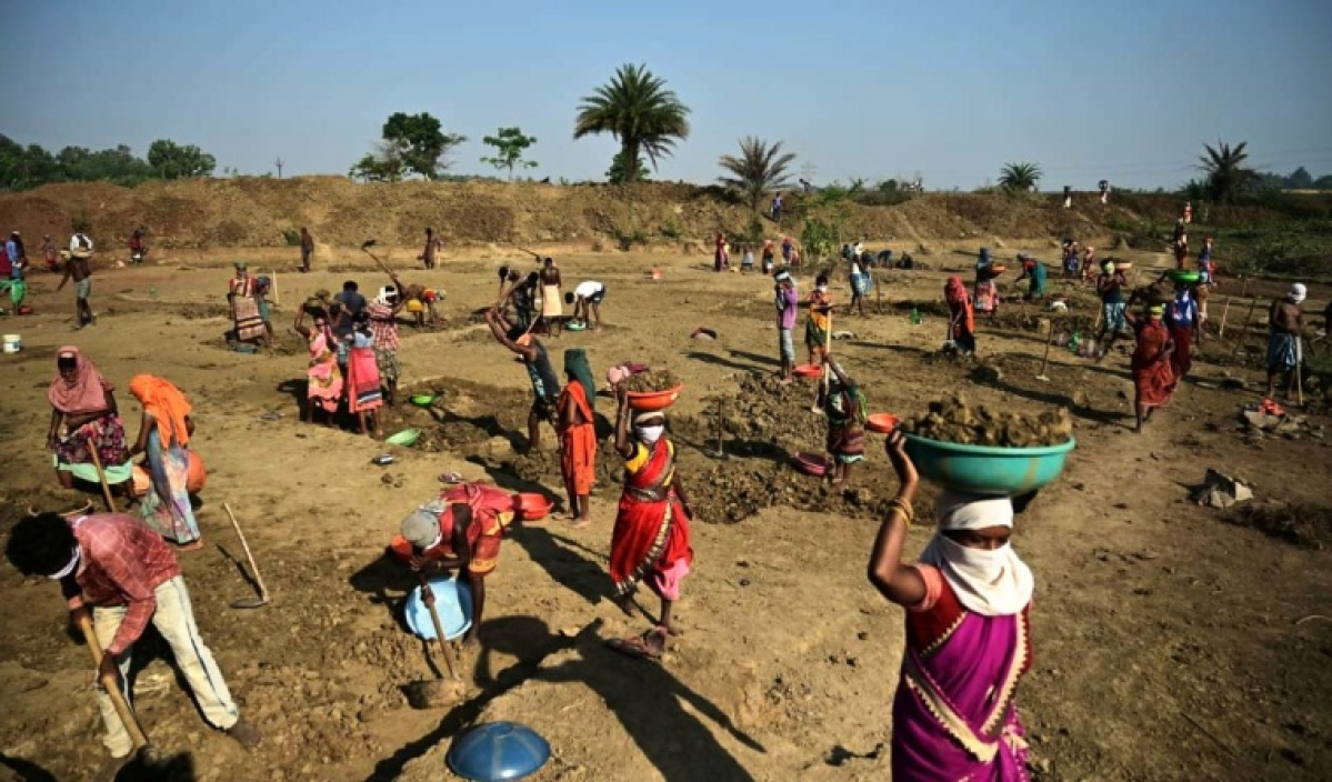 Covid's impact on rural Rajasthan: MGNREGA works stopped in State to curb virus spread