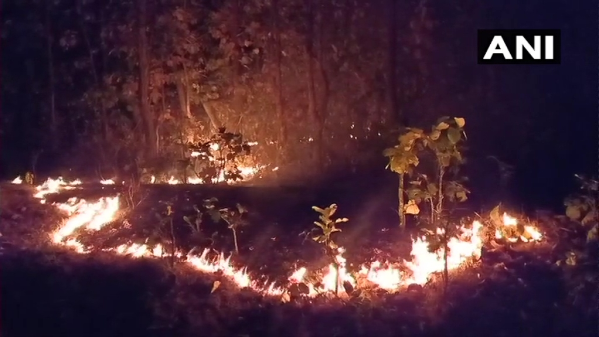 Odisha: Similipal Sanctuary fire brought under control, CM Naveen Patnaik asks officials to take preventive steps