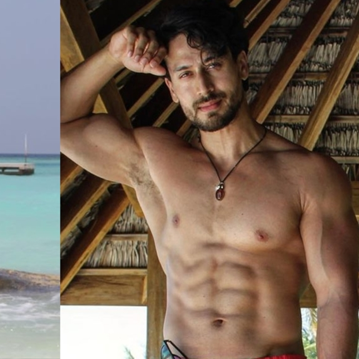 Disha Patani's birthday wish for rumoured beau Tiger Shroff features an unseen shirtless pic