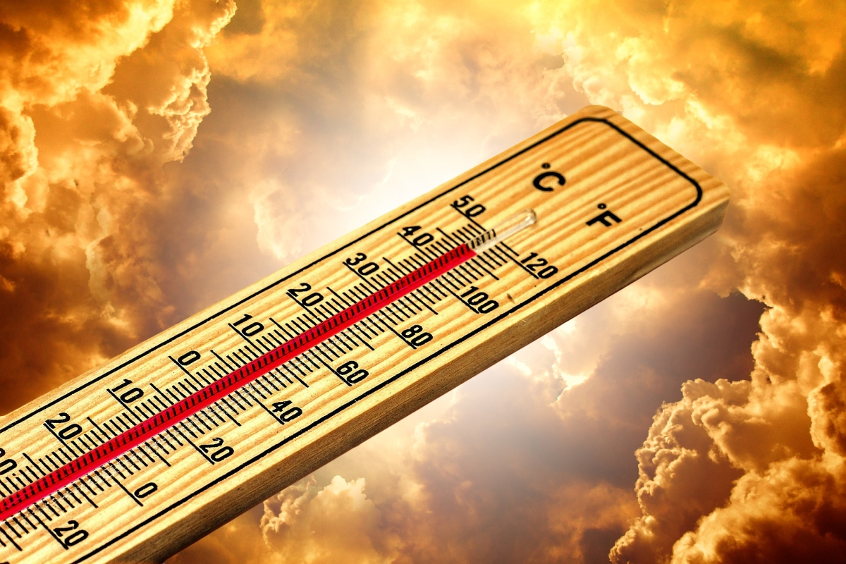 Temperature rises in many districts of Madhya Pradesh