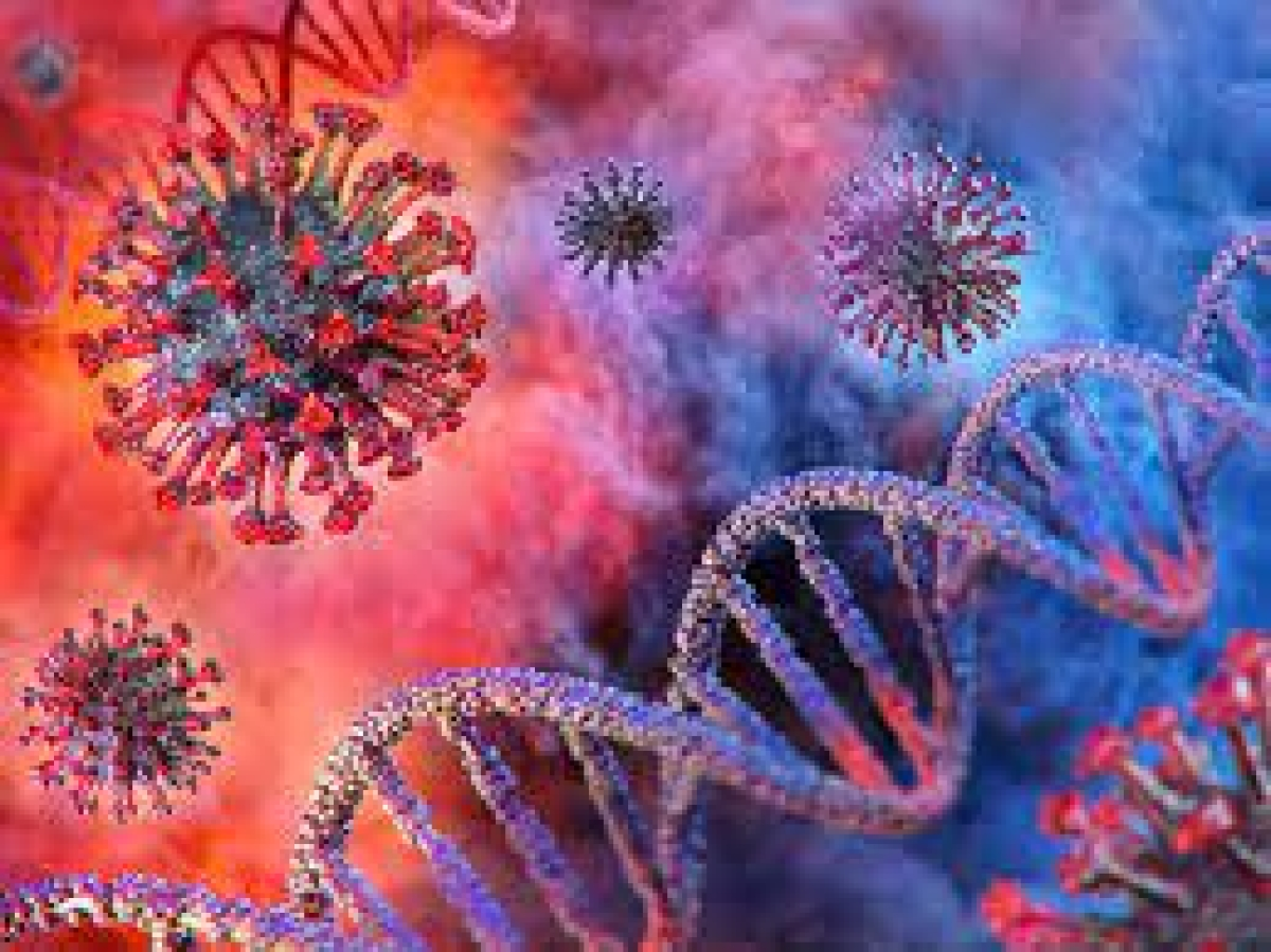 Pune: Samples sent for genome sequencing to identify new COVID-19 variant