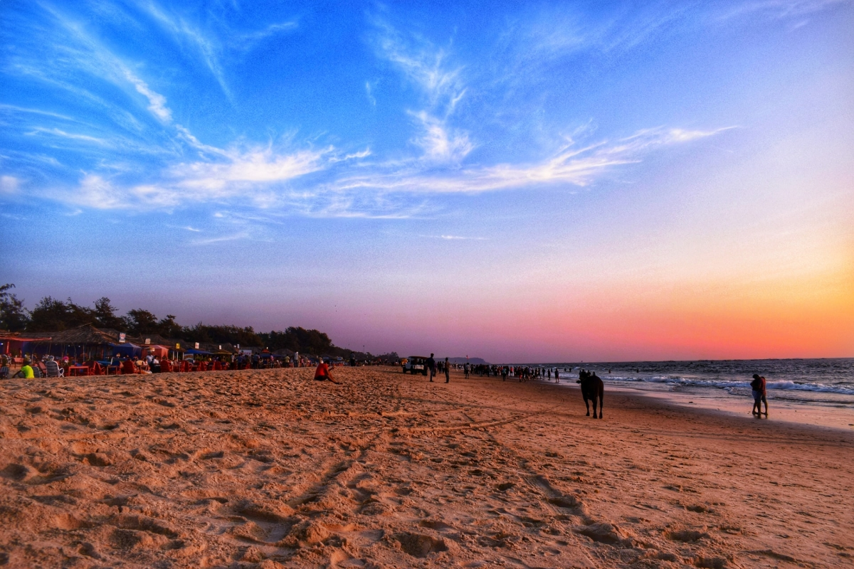 Section 144 imposed in Goa ahead of Holi, Eid, Easter in light of increasing COVID-19 cases