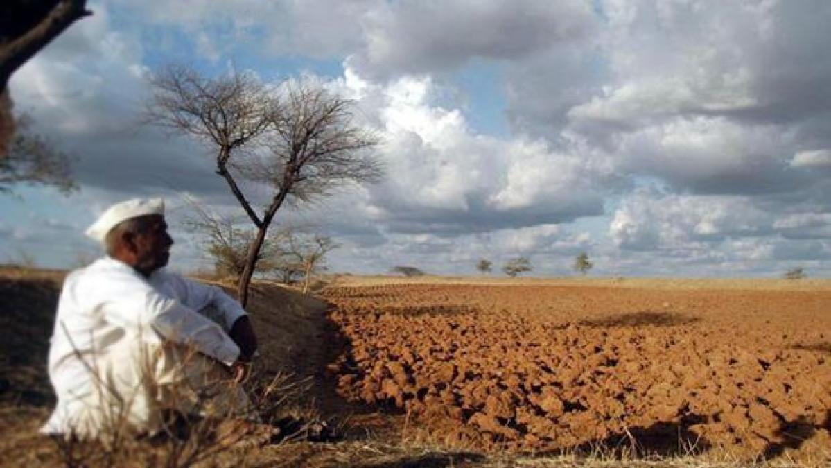 Debt-ridden farmer ends life in Nagpur district