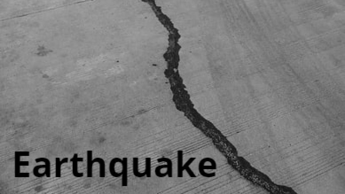 7.3 Magnitude earthquake jolts New Zealand, tsunami warning issued
