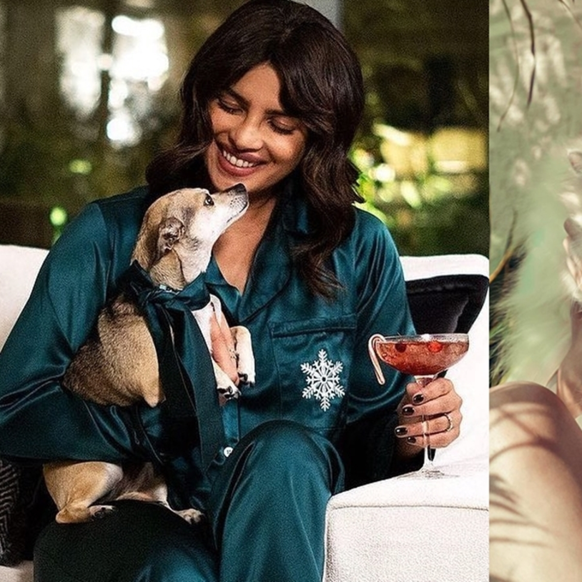 National Pet Day 2021: From Priyanka Chopra to Alia Bhatt - celebs and their furry friends