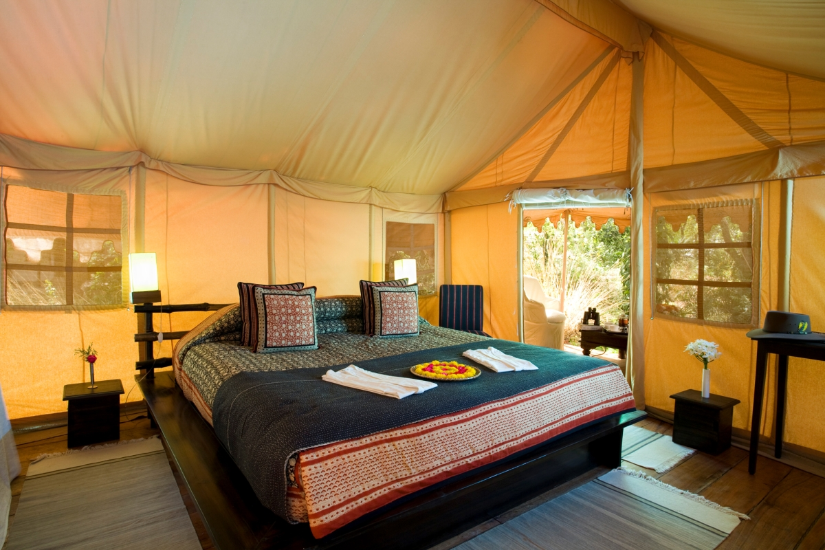 Travel trends: Four best glamping spots in India where you should definitely go for a rich and rustic retreat!