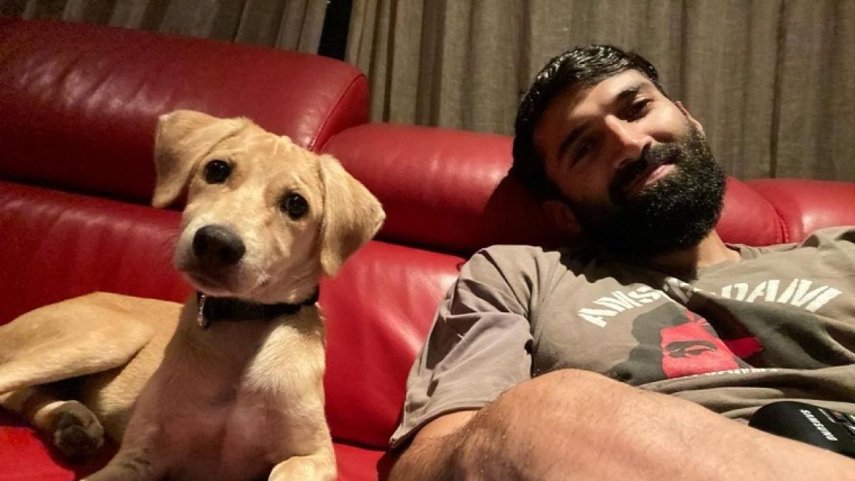 Meet Aditya Roy Kapur's new friend
