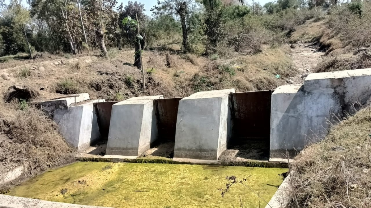 Indore: Negligence and utilisation of funds of tendu patta for other projects including dams unearthed, DFO under scanner