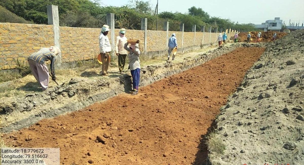 NTPC further expands its green presence with Miyawaki method plantation