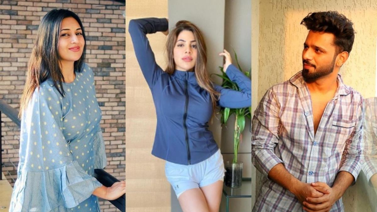 Khatron Ke Khiladi 11: From Rahul Vaidya to Divyanka Tripathi - the list of contestants this season