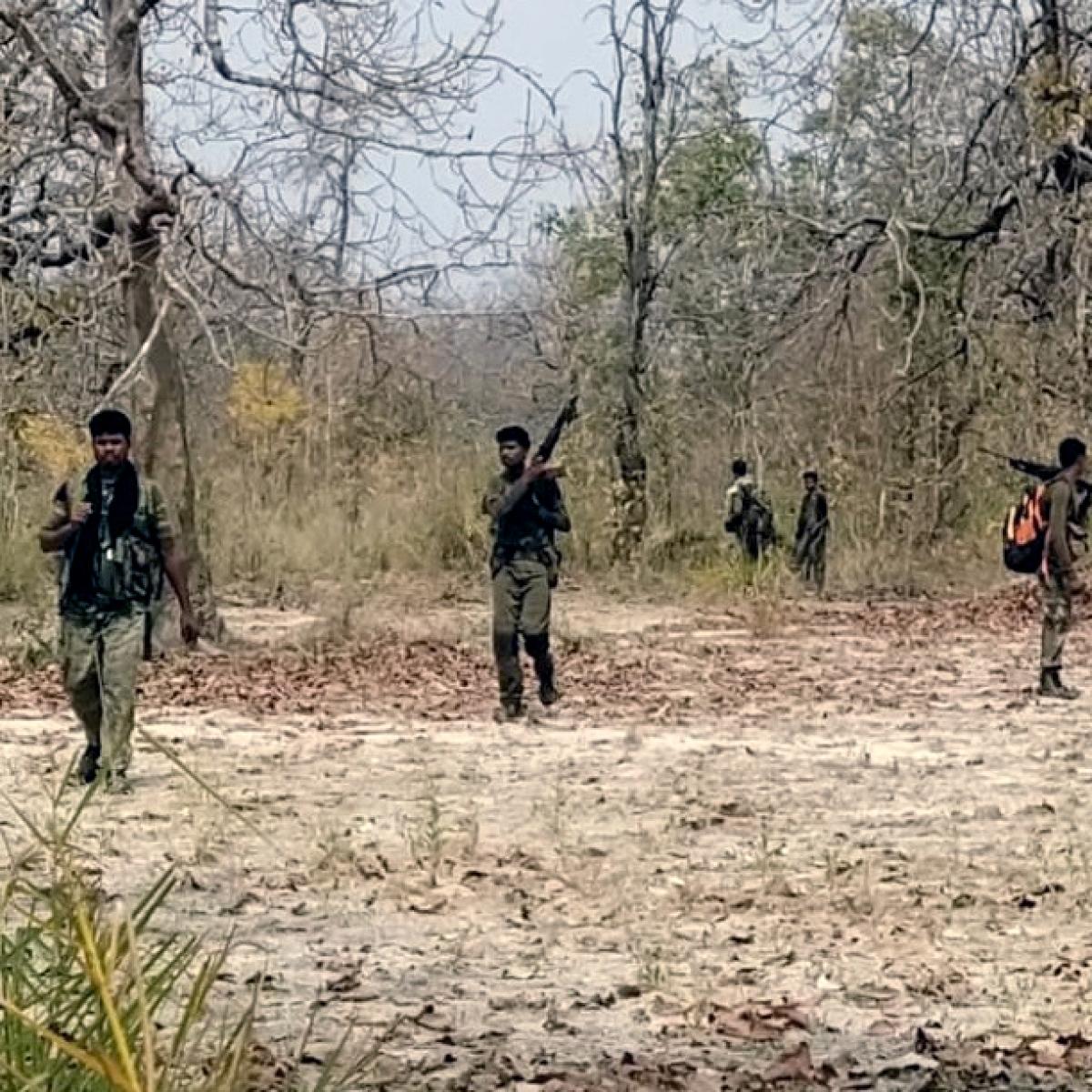 Chhattisgarh: Naxal carrying Rs 5 lakh reward killed in Dantewada