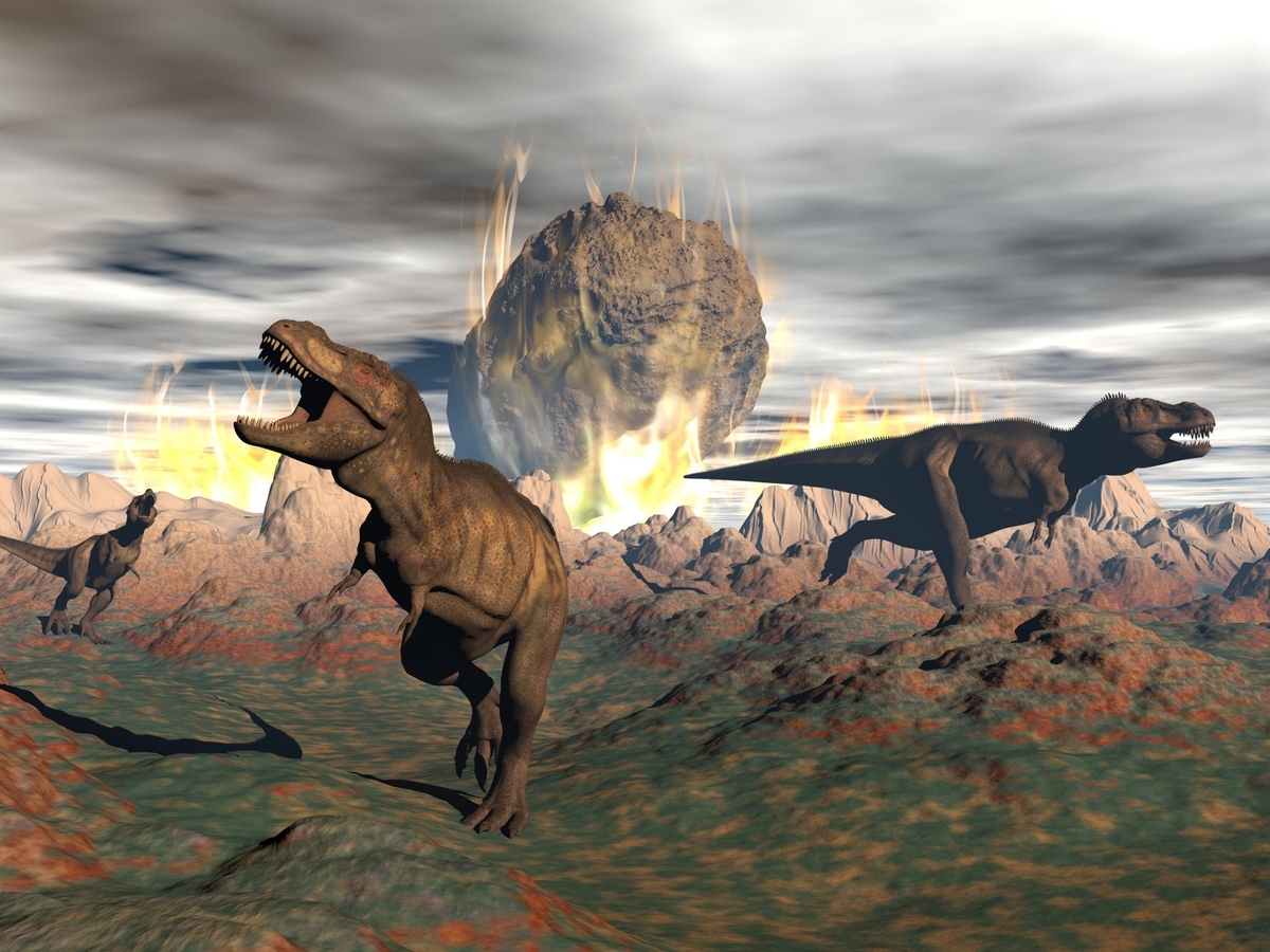 Did you know? Asteroid that eliminated dinosaurs gave rise to Amazon rainforest