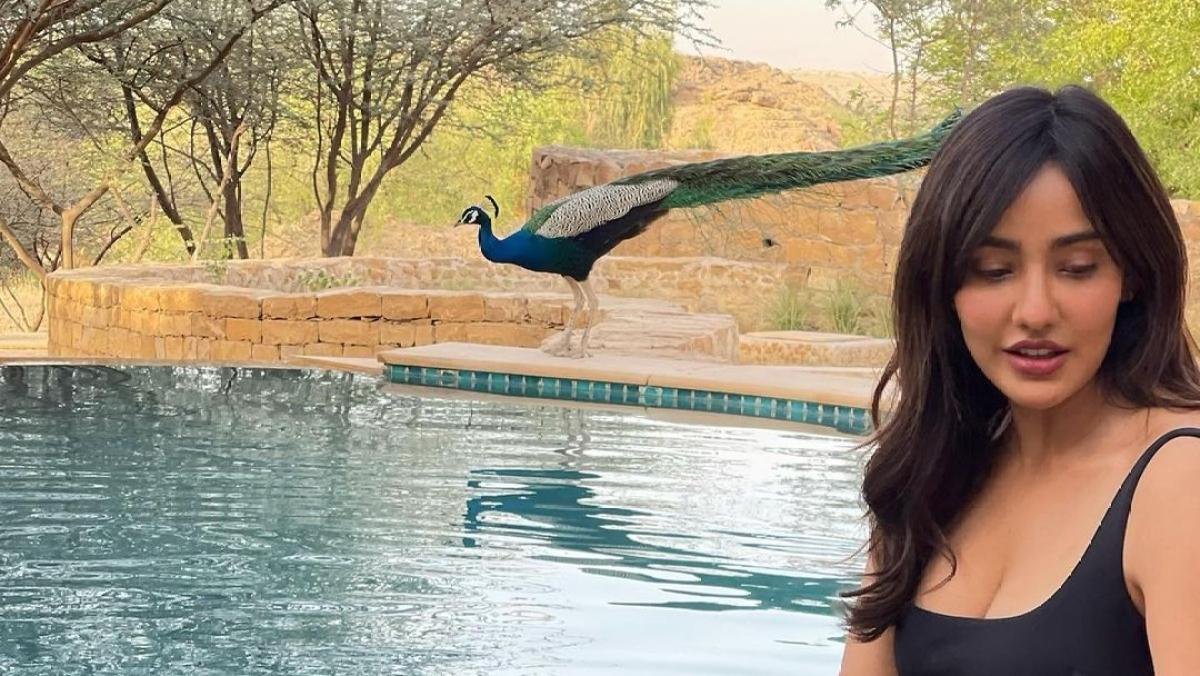 Watch: Unlike Digangana Suryavanshi, Neha Sharma knows how to 'chill' with peacocks