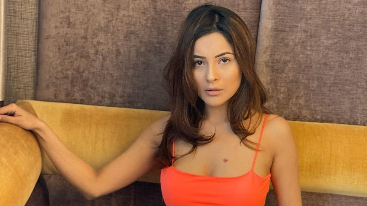 Watch: Shehnaaz Gill flaunts sexy dance moves on Selena Gomez's 'Look At Her Now', sets the internet ablaze