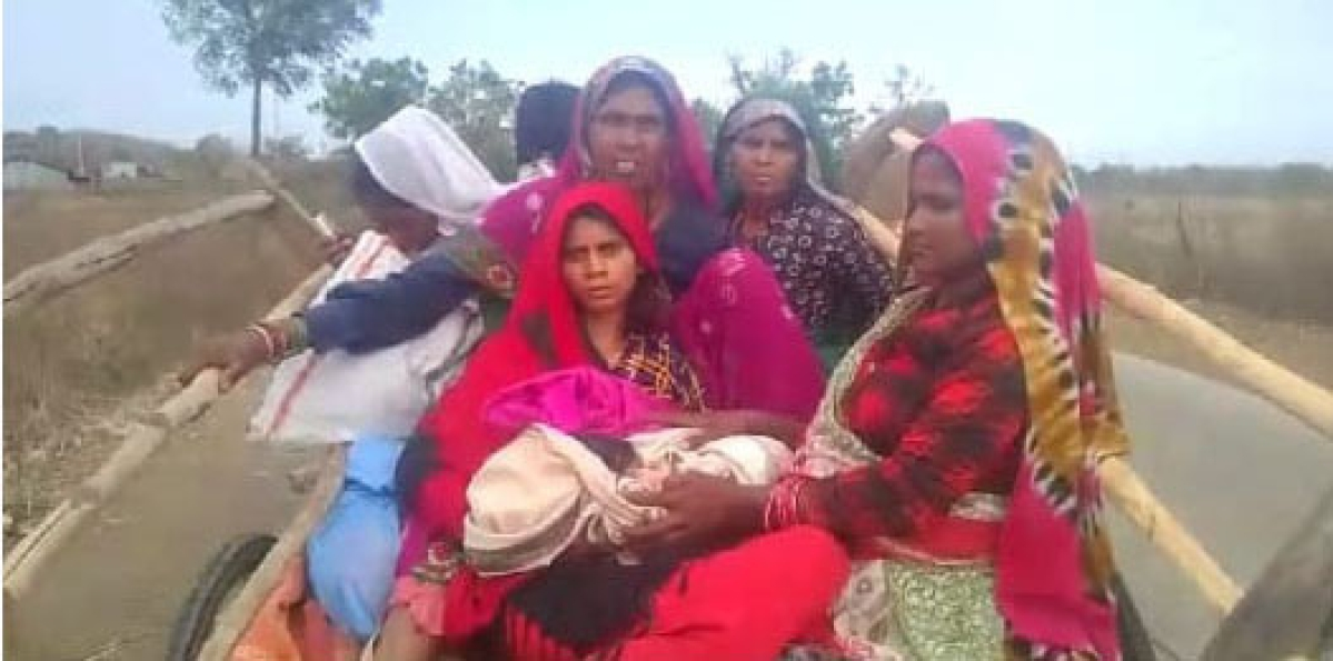 Madhya Pradesh: Pregnant woman avails bullock cart to reach delivery centre in Burhanpur