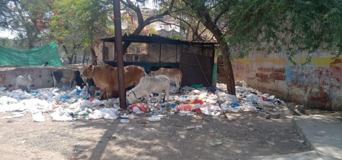 Garbage strewn in district hospital in Mandsaur