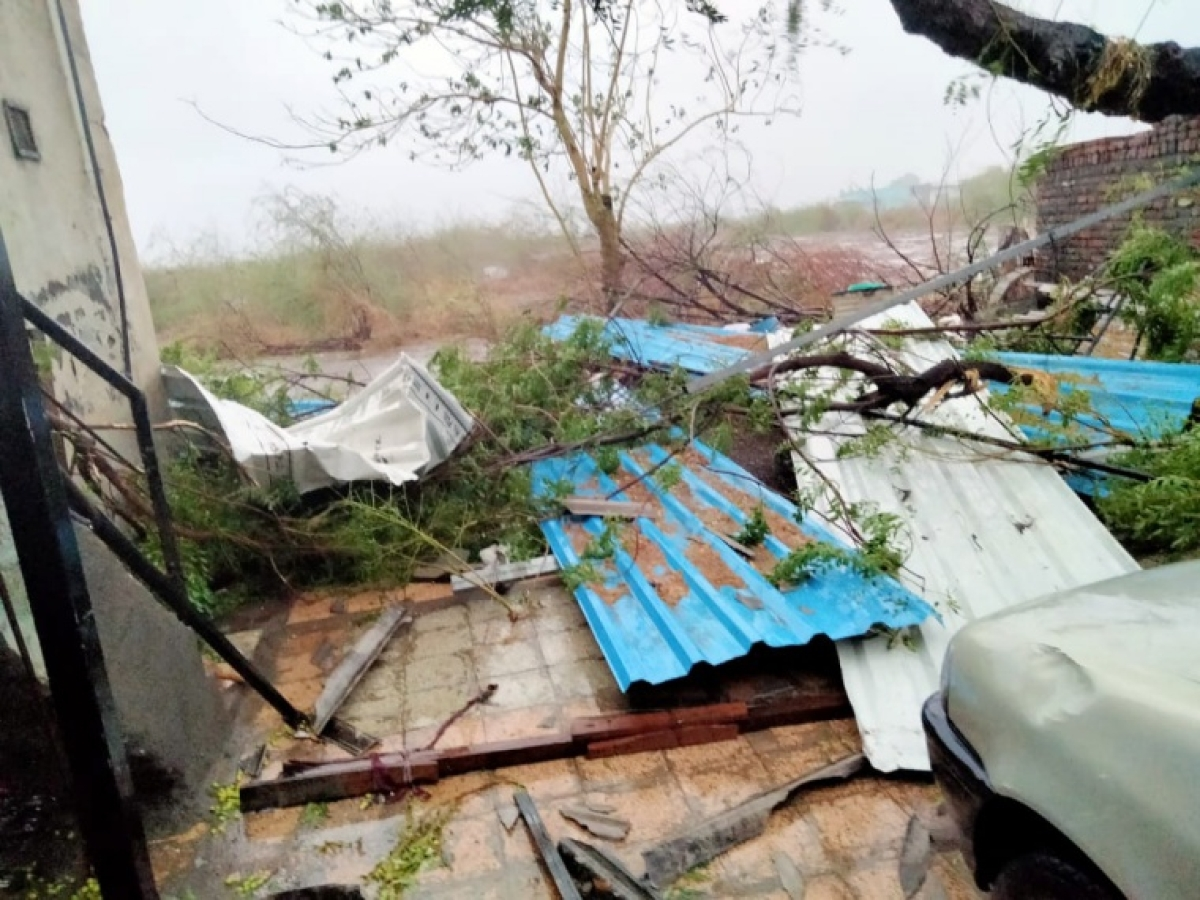 Several Trees uprooted the aftermath of Cyclone Tauktae, in Amreli on Tuesday in Gujarat