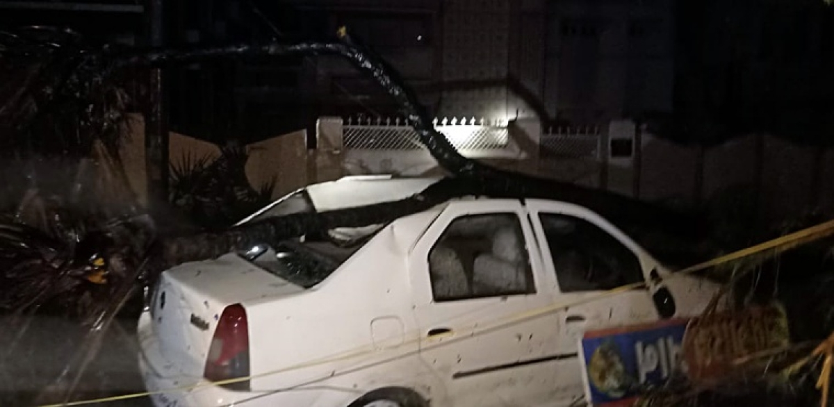 A car damaged by an uprooted tree aftermath of Cyclone Tauktae