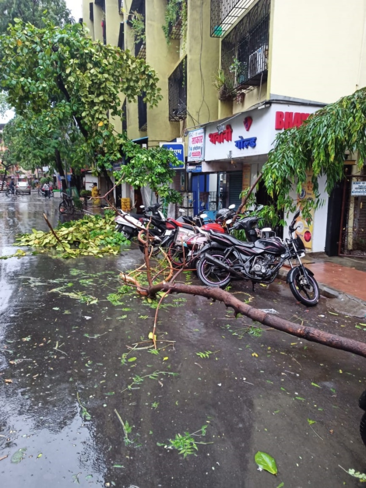 Cyclone Tauktae: Gusty winds, heavy rains wreak havoc in Mira Bhayander; trees uprooted, waterlogging reported in