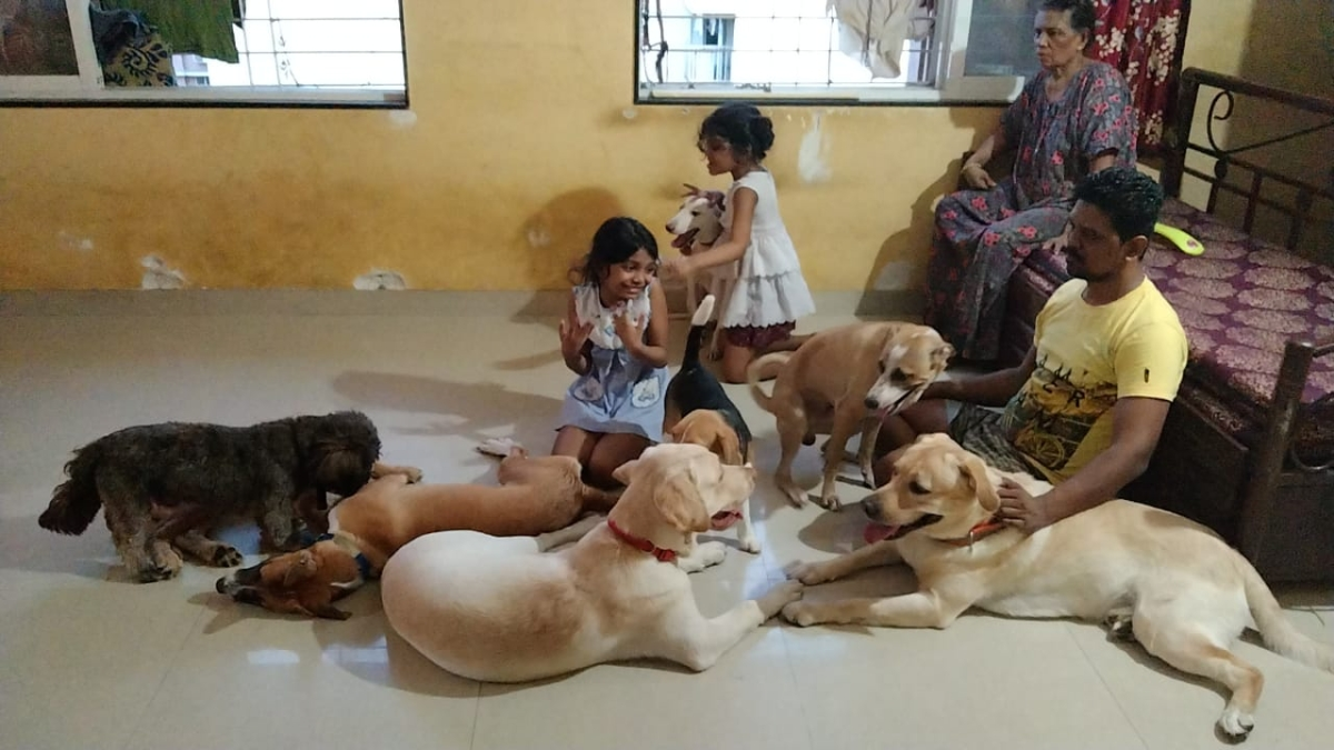 Angels of Mumbai: That's pawsome! Man provides shelter to dogs whose owners are battling with COVID-19