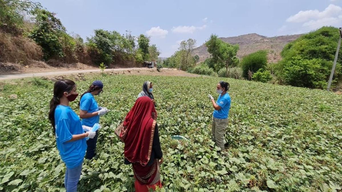 Volunteers on a farm
