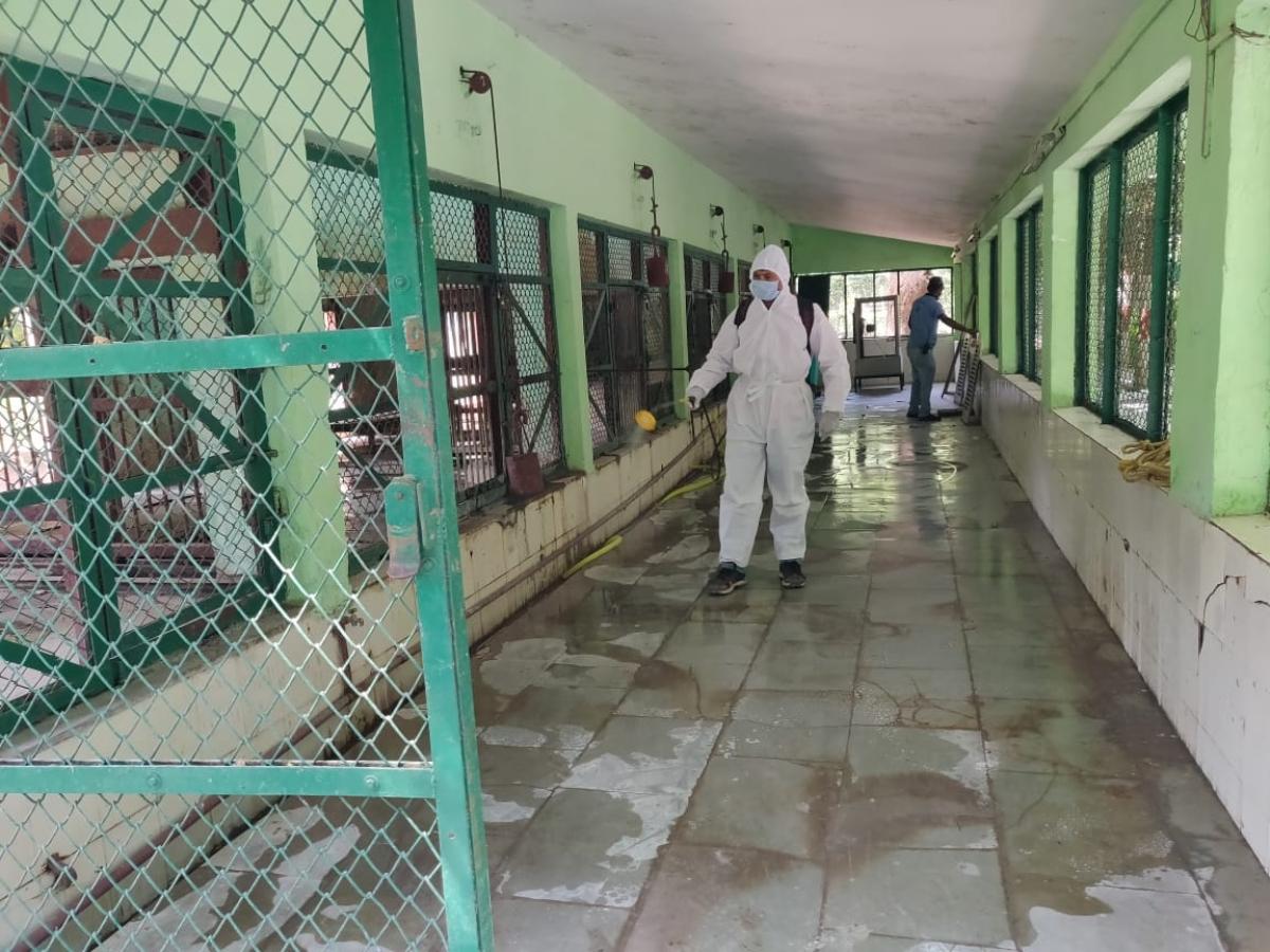 Enclosures being sanitised