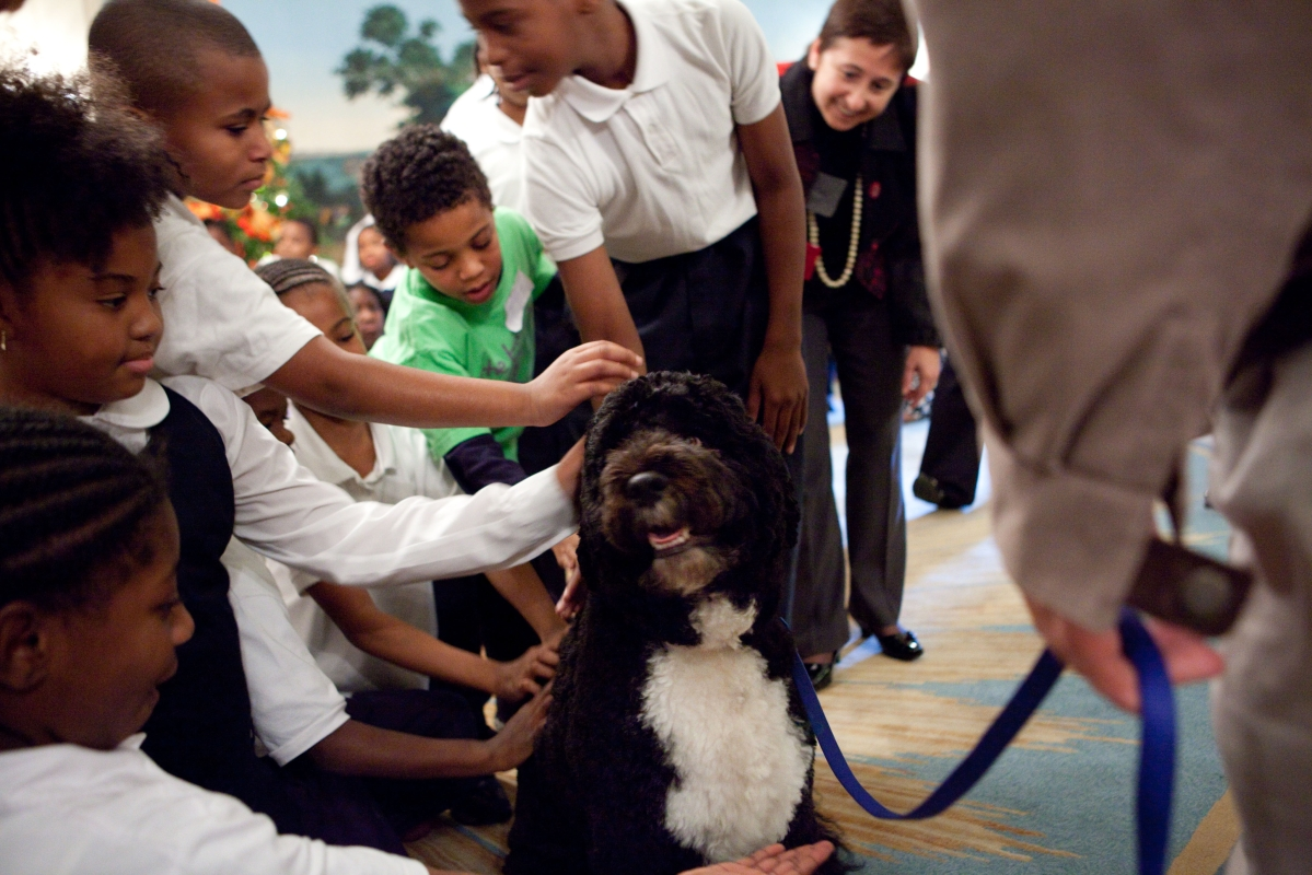 Obama family's pet 'Bo' passes away due to Cancer; dog lovers on Twitter grieve