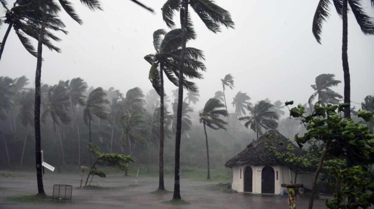 Strong wind continues to lash following the Cyclone alert in Thiruvananthapuram