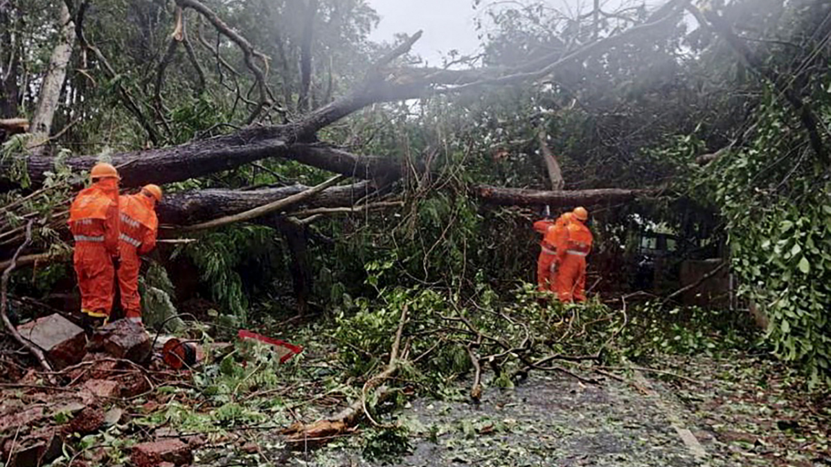 In Pics: Cyclone Tauktae causes destruction in Kerala and Goa