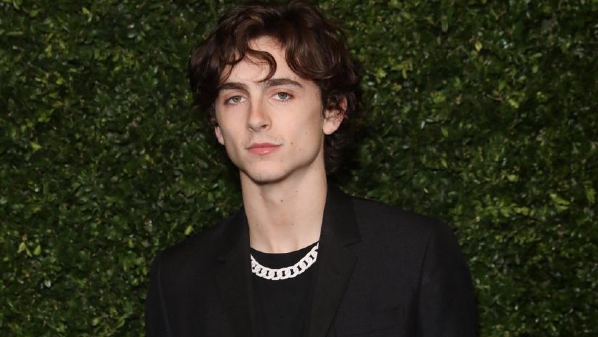 Timothee Chalamet to play young Willy Wonka in Warner Bros' origin movie