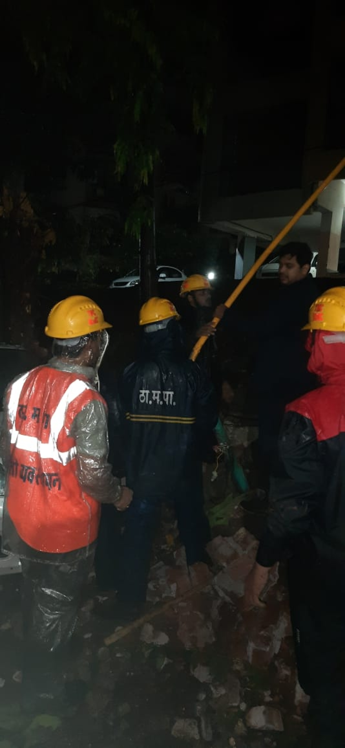 Cyclone Tauktae: 159 complaints of tree fall received in 24 hours in Thane
