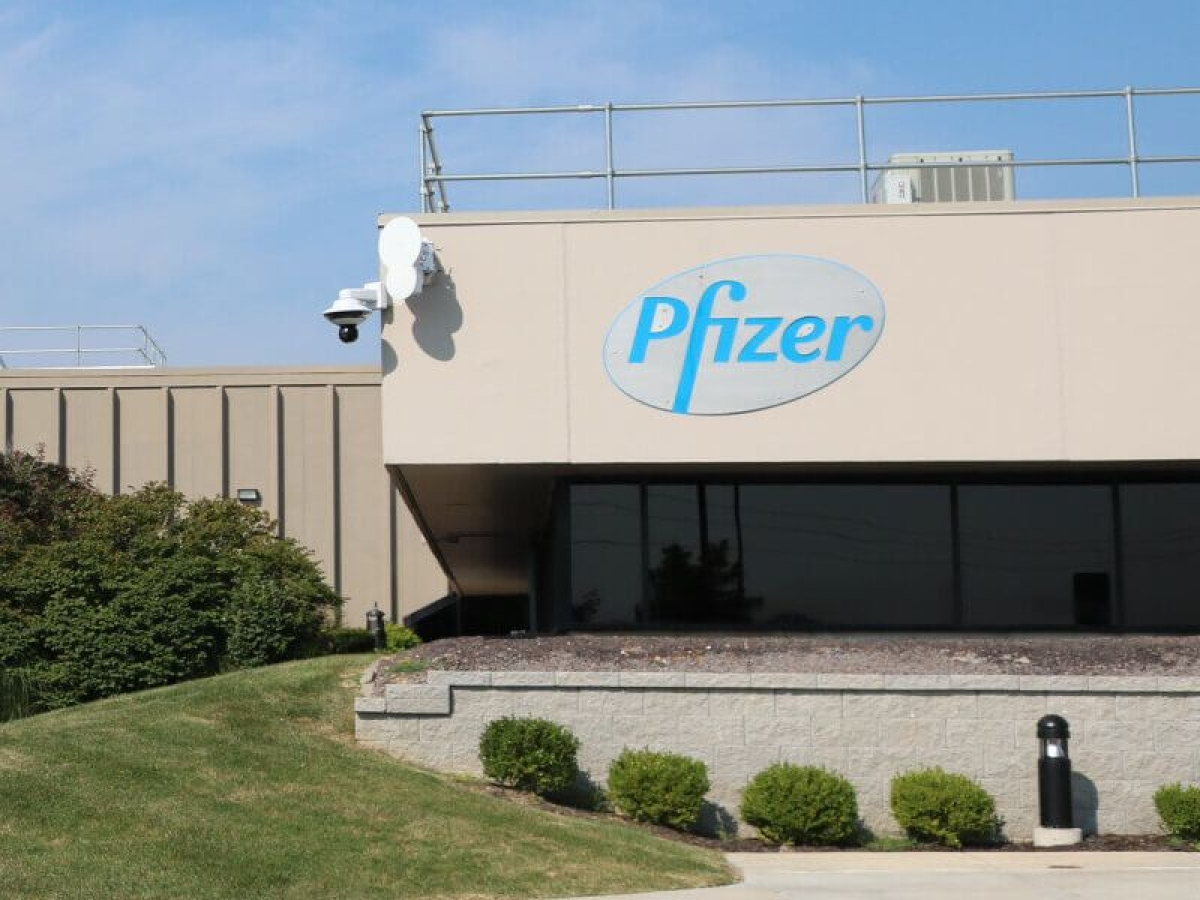 Results: Pfizer Ltd Q4 net profit declines 2% at Rs 100.55 crore; recommends Rs 30 per equity share