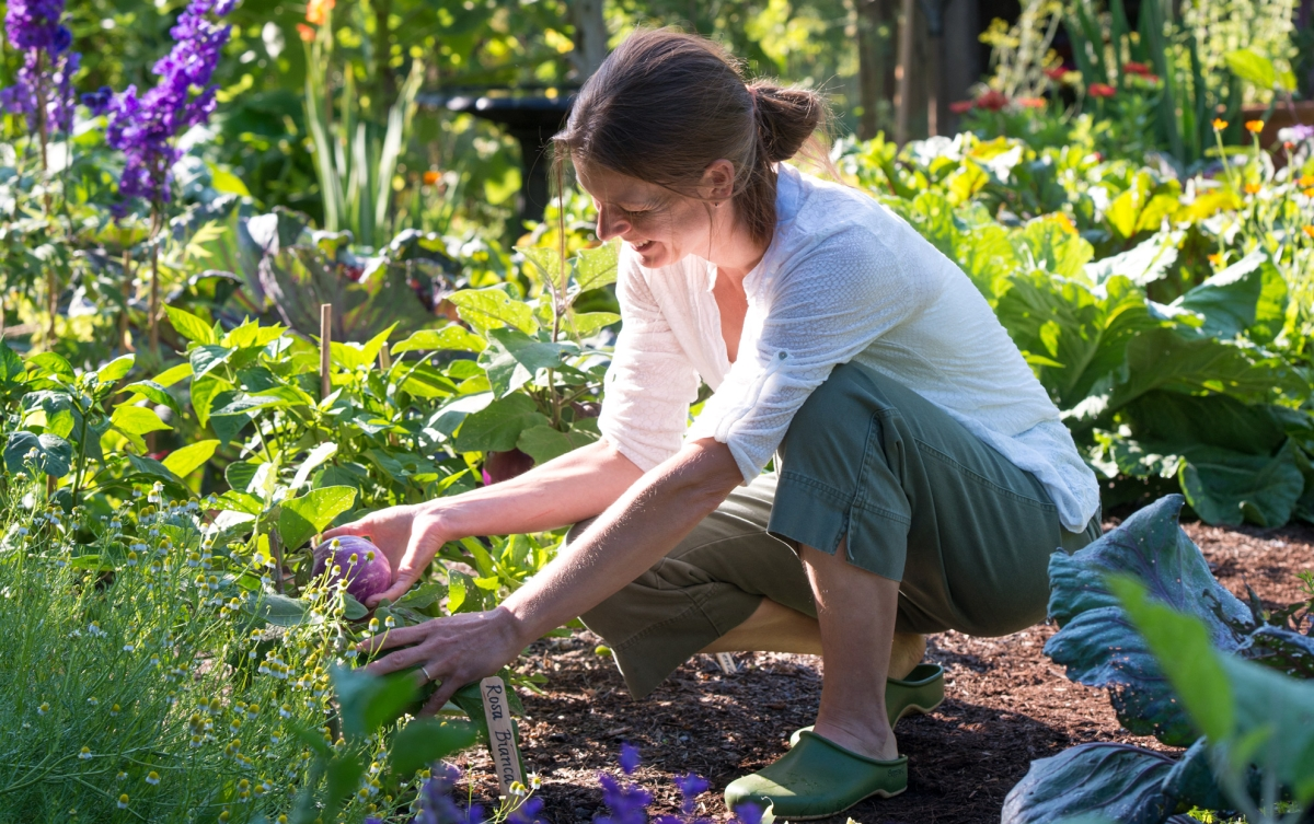 Beat those mental blues with gardening
