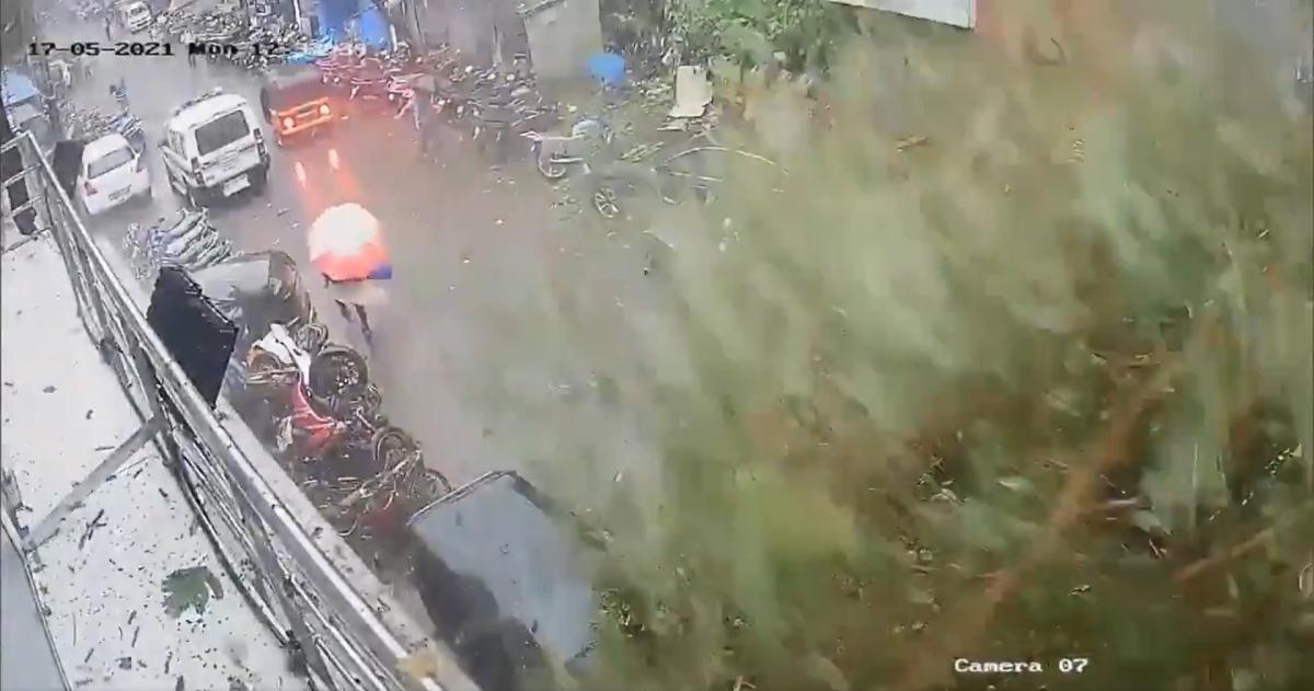 Vikhroli woman escapes falling tree