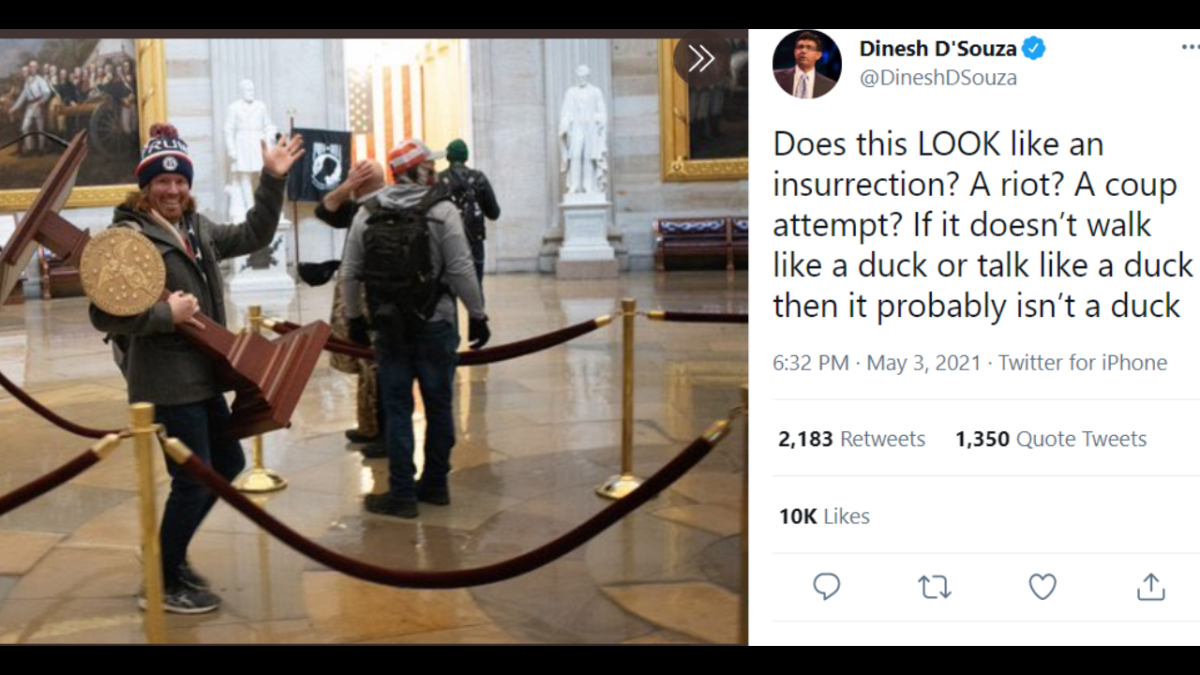 'Sounds about white': Conservative commentator Dinesh D'Souza trolled for whitewashing Capitol Hill riots