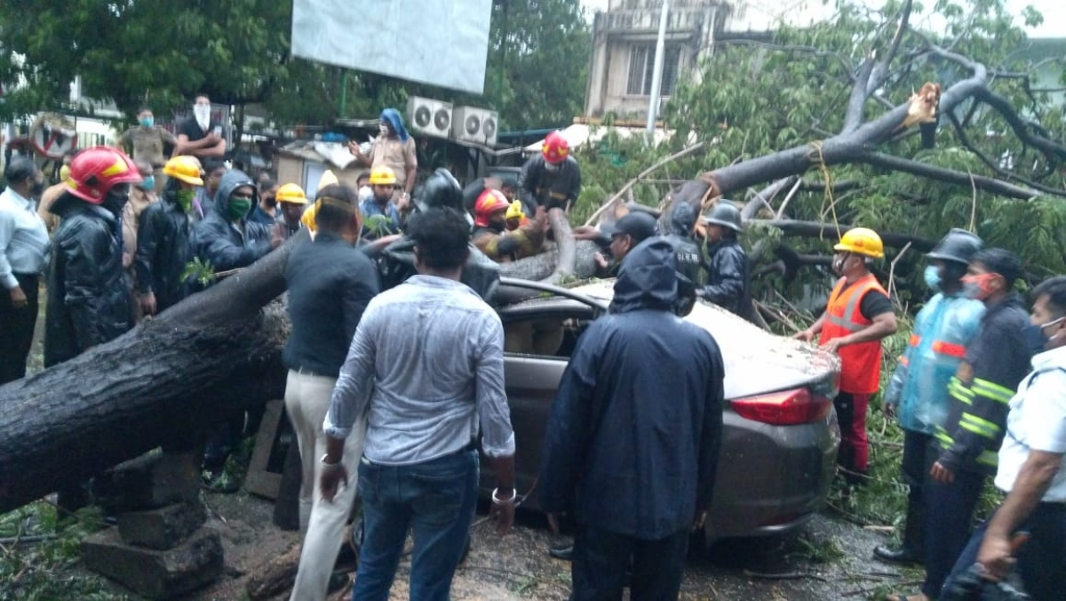 Dr. Ritesh Gaikwad, 45, was stuck in the car when a tree fell down on it
