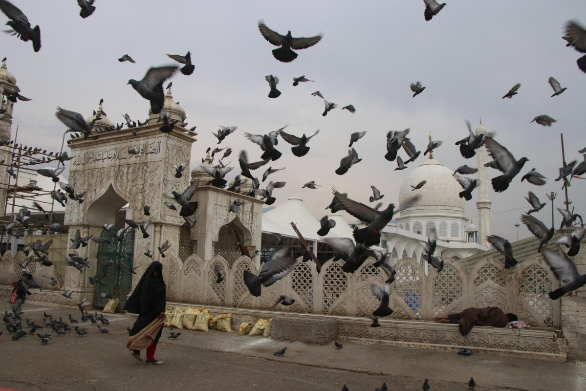 A kashmiri woman feeds pigeons at closed Hazratbal Shrine during Corona curfew in Srinagar, Kashmir. As the COVID-19 cases continue to rise the authorities imposed strict Corona curfew across Jammu and Kashmir in order to stop further spread of Coronavirus.