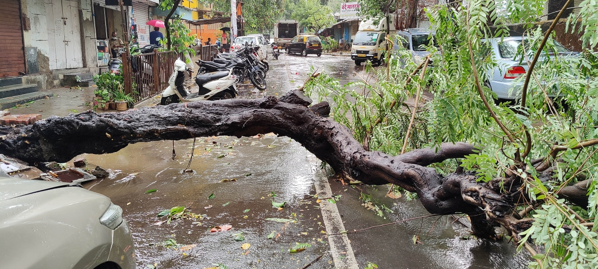 Mumbai weather update: Cyclone Tauktae wreaks havoc; extremely heavy rainfall over next few hours in city, says IMD