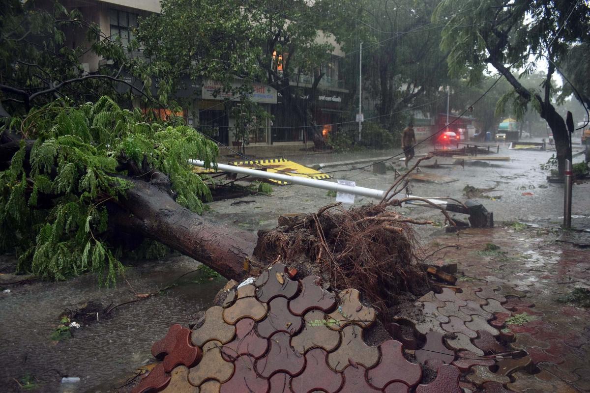 Cyclone Tauktae: Uprooted trees, waterlogging cause traffic snarls across Mumbai -- see pics
