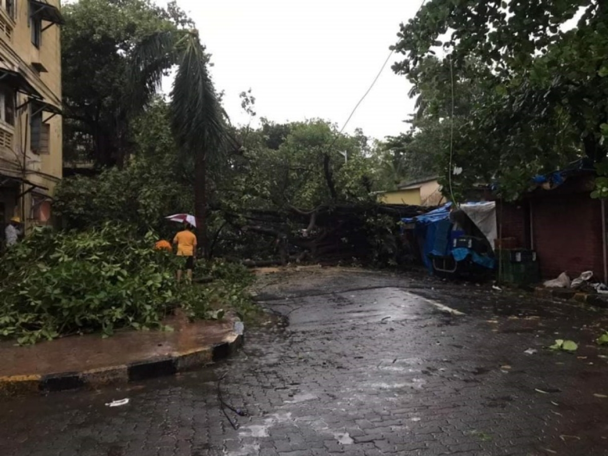 Mumbai: At least two killed due to Cyclone Tauktae in city