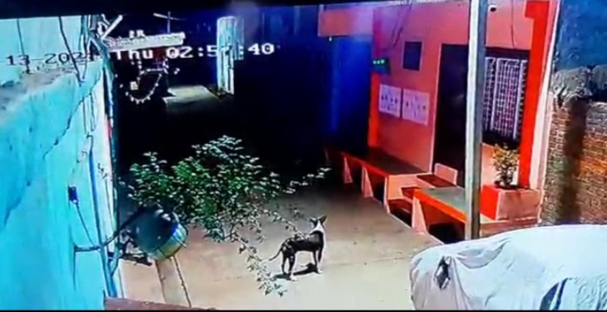 Madhya Pradesh: People in Garoth foil theft bid, demand police patrolling in colonies