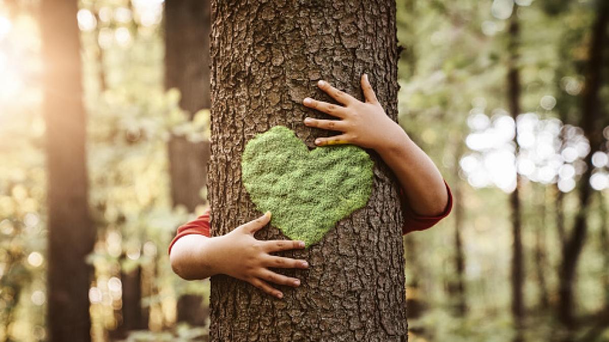 Ujjain: Checking human harm is key to sustainable biodiversity