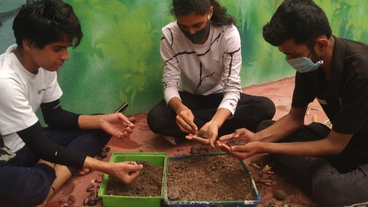 Indore: Seed Ball Carnival at city zoo as World Environment Day initiative