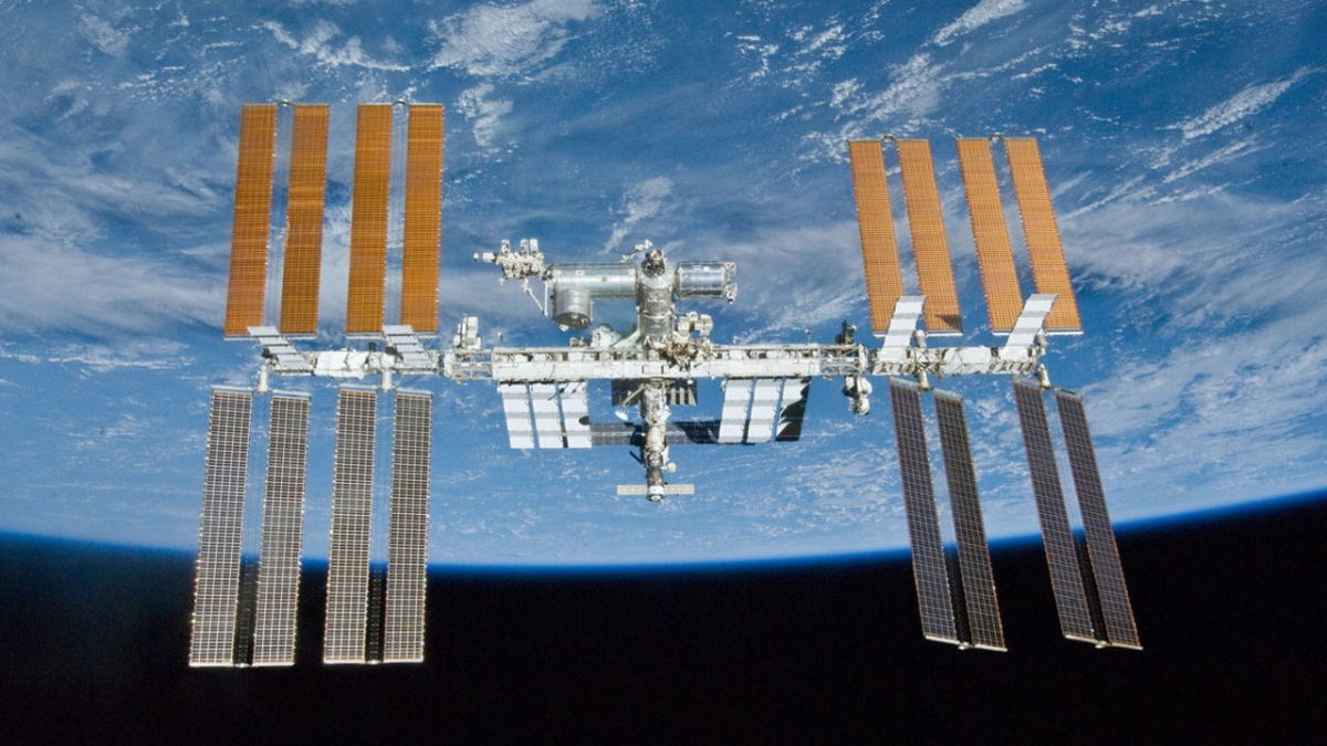 Researchers to culture living heart cells on space station